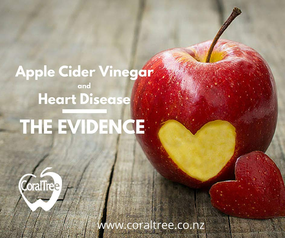 Apple-Cider-Vinegar-and-Heart-Disease-_-The-Evidence